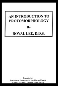 Intro to Protomorphology with Border
